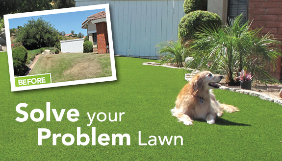 do it yourself products, do it yourself turf, turf prices, lawn savings, water savings, lawn problems