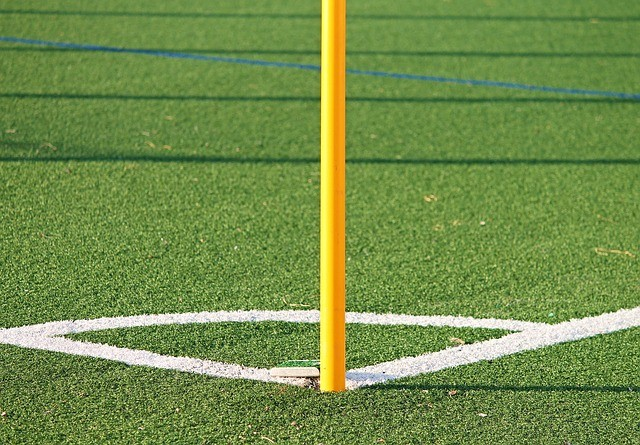 professionals to install your artificial turf