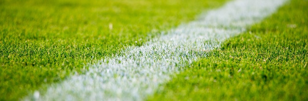 Top Different Types of Turf and How to Use Them