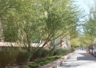 City of Phoenix Streetscapes